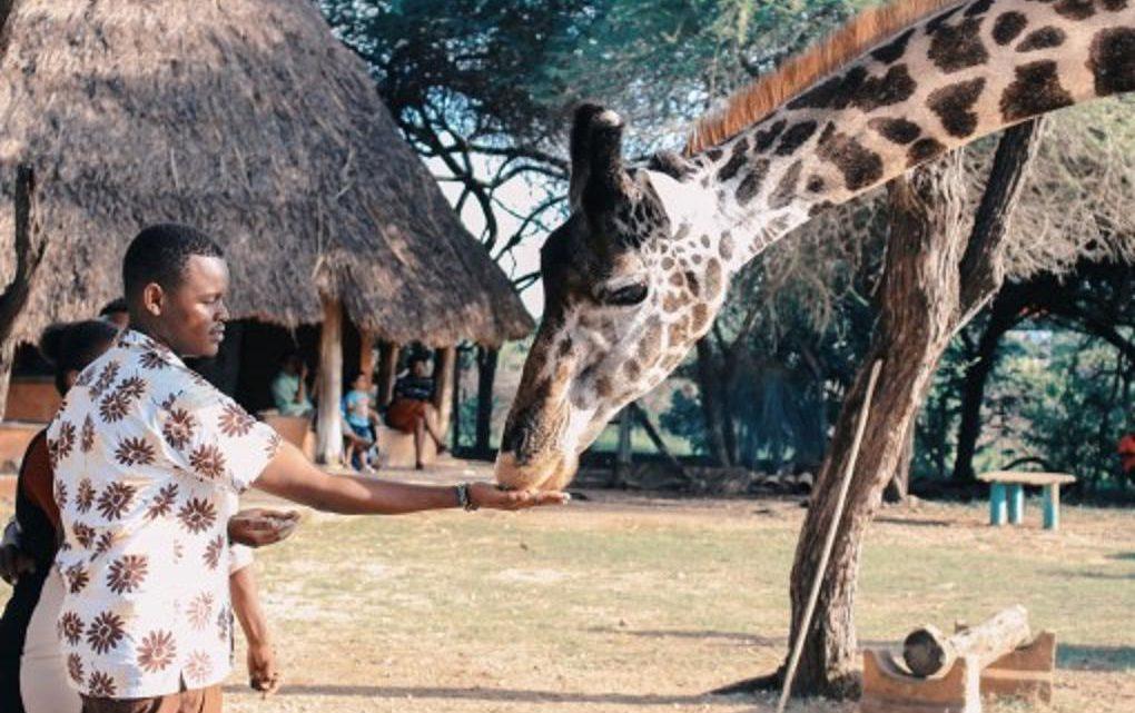 Une identité gastronomique à connaître durant un voyage au Kenya