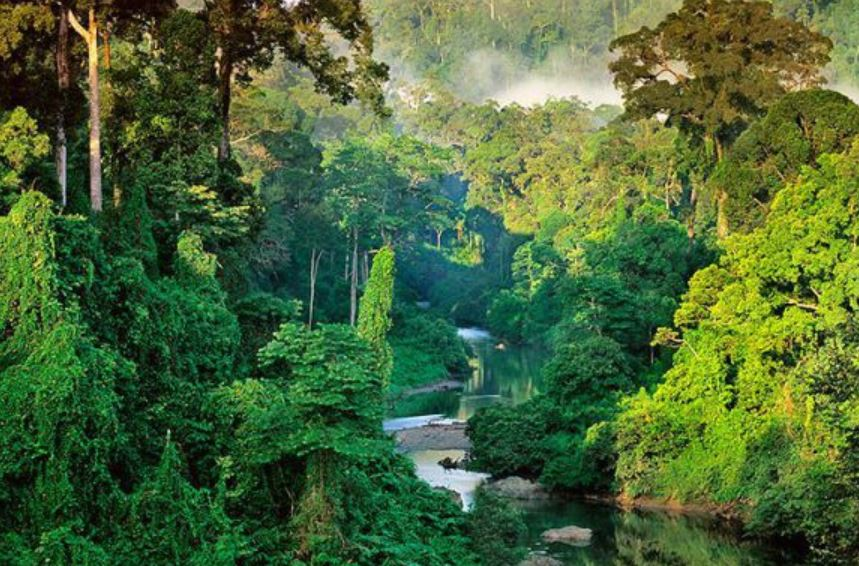 Les trois parcs immanquables du territoire costaricain